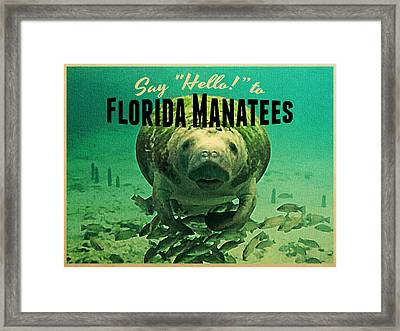 Vintage Florida Manatees Framed Print by Flo Karp
