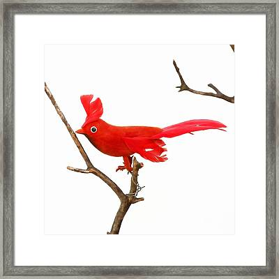 Vintage Red Cardinal Framed Print by Art Block Collections