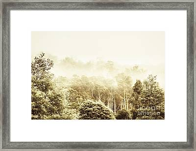 Vintage Winter Woodland Framed Print by Jorgo Photography - Wall Art Gallery