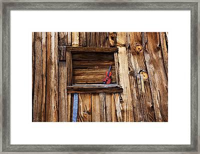Viola In Window Framed Print by Garry Gay
