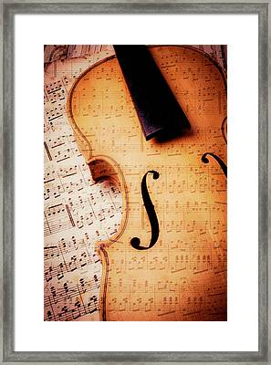 Violin And Musical Notes Framed Print by Garry Gay
