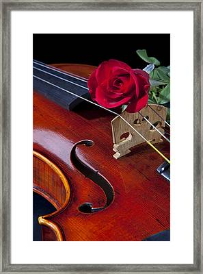 Violin And Red Rose Framed Print by M K  Miller