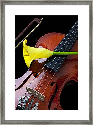 Violin With Yellow Calla Lily Framed Print by Garry Gay