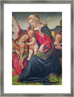 Virgin And Child And Angel Musicians  Framed Print by Piero di Cosimo