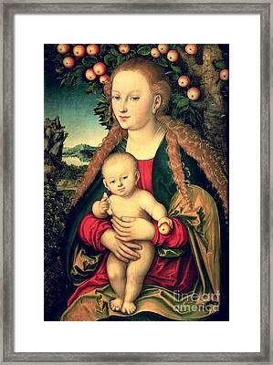 Virgin And Child Under An Apple Tree Framed Print by Lucas Cranach the Elder