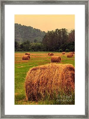 Virginia Evening Framed Print by Thomas R Fletcher