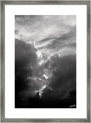 Vision Framed Print by Ed Smith