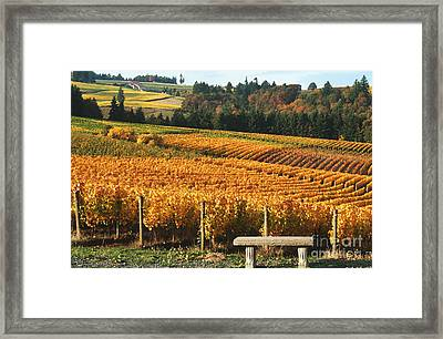 Visiting Wine Country Framed Print by Margaret Hood