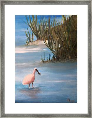 Wading Framed Print by Betty Pimm