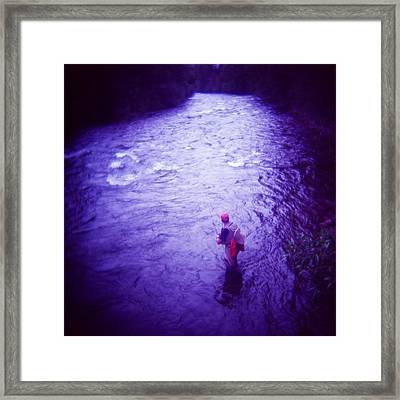 Wading Patiently Framed Print by Matthew Lit