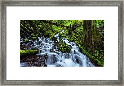 Wahkeena Framed Print by Chad Dutson