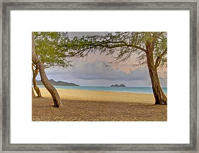 Waimanalo Beach Framed Print by Michael Peychich