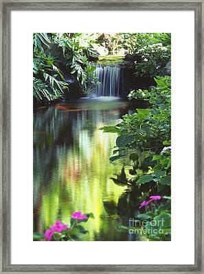 Waimea Falls Park Framed Print by Bill Brennan - Printscapes