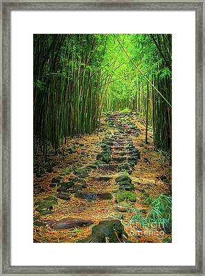 Waimoku Bamboo Forest #2 Framed Print by Inge Johnsson