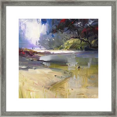 Waipu Cove Framed Print by Richard Robinson
