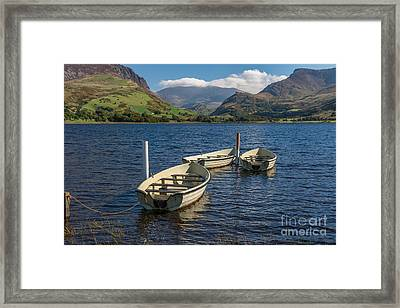Waiting Framed Print by Adrian Evans