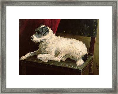 Waiting For Master Framed Print by George Paice