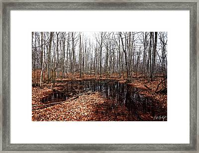 Waiting For Spring Framed Print by Phill Doherty