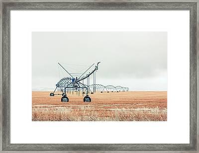 Waiting For Spring Framed Print by Todd Klassy