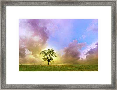 Waiting For The Storm Framed Print by Rima Biswas