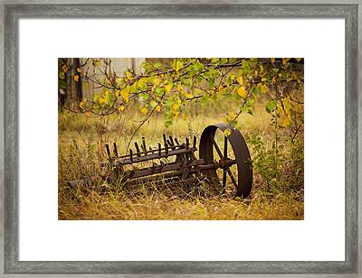 Waiting On My Other Wheel Framed Print by Toni Hopper