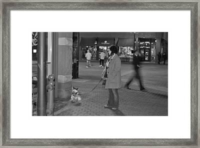 Waiting On The Dog Framed Print by Luke Cain