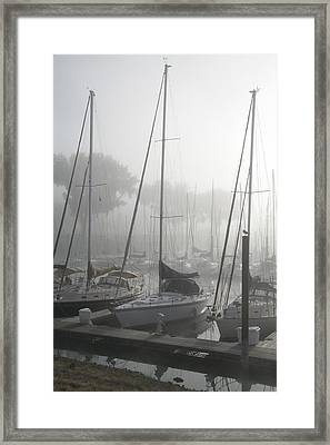 Waiting On The Fog Framed Print by Laurie With