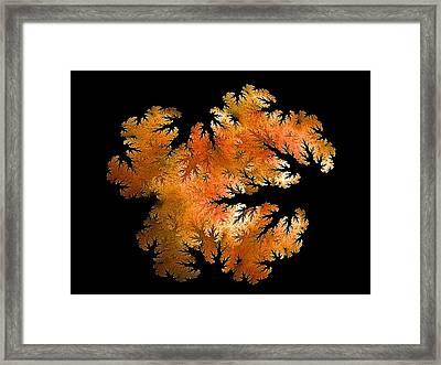 Waking In Mandelbrot Forest-2 Framed Print by Doug Morgan