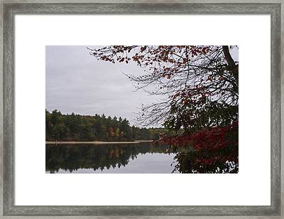 Walden Pond Fall Foliage Le 2aves Concord Ma Framed Print by Toby McGuire