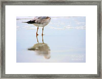 Land Sea And Sky Series Walking On Water Framed Print by Angela Rath