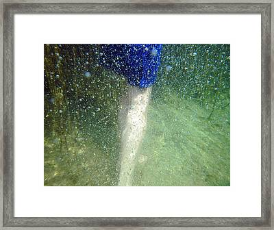 Walking Framed Print by Renata Vogl