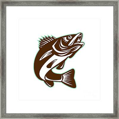 Walleye Fish Jumping Isolated Retro Framed Print by Aloysius Patrimonio