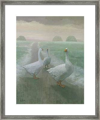 Wandering Geese Framed Print by Steve Mitchell