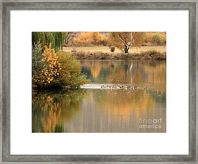 Warm Autumn River Framed Print by Carol Groenen