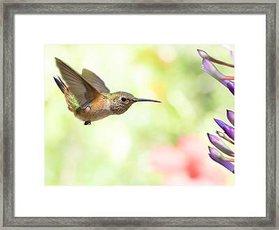 Washed Out Framed Print by Mike Herdering