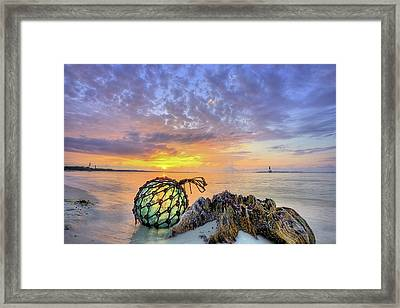 Washed Up In Pensacola Beach Framed Print by JC Findley