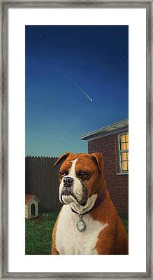 Watchdog Framed Print by James W Johnson