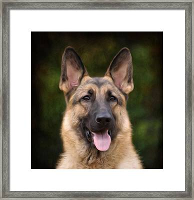 Watchful Framed Print by Sandy Keeton