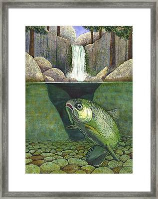 Water Framed Print by Catherine G McElroy