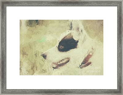 Water Colour Art Of An Adorable Puppy Dog Framed Print by Jorgo Photography - Wall Art Gallery