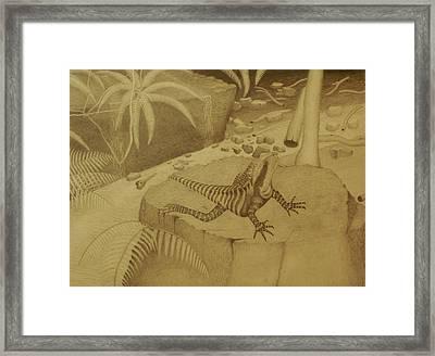 Water Dragon Lizard Framed Print by Brian Leverton