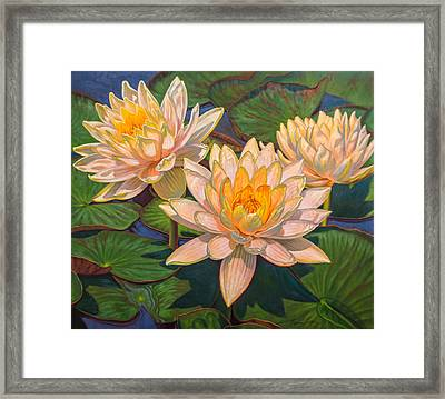 Water Lilies 6 Framed Print by Fiona Craig