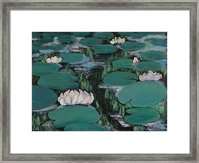 Water Lilies In Hawaii Framed Print by Zanobia Shalks