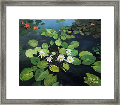 Water Lilies Framed Print by Kiril Stanchev