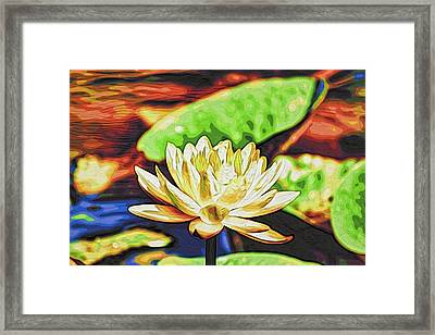 Water Lily Framed Print by Alexandre Ivanov