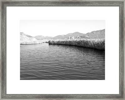 Water Scene In B And W Framed Print by Svetlana Sewell