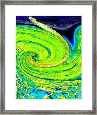 Water Snake Framed Print by Will Borden