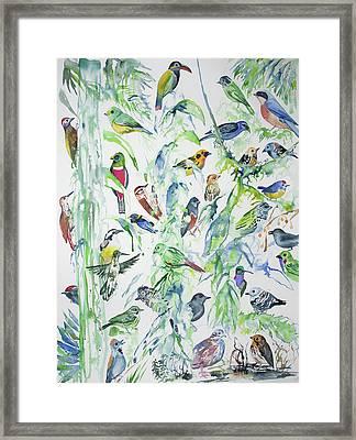 Watercolor - Birds Of Wildsumaco Framed Print by Cascade Colors