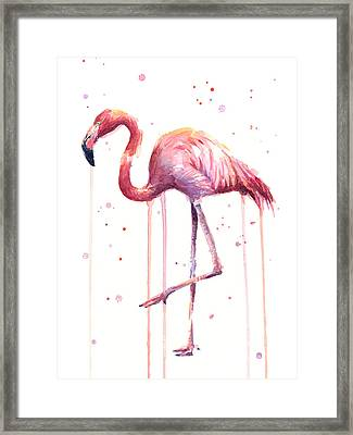Watercolor Flamingo Framed Print by Olga Shvartsur