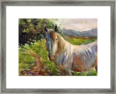 Watercolor Horse Framed Print by Svetlana Novikova